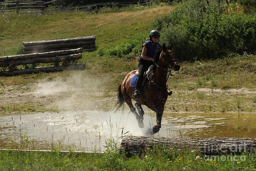 Horse Photograph - Running Thru Water  by Janice Byer
