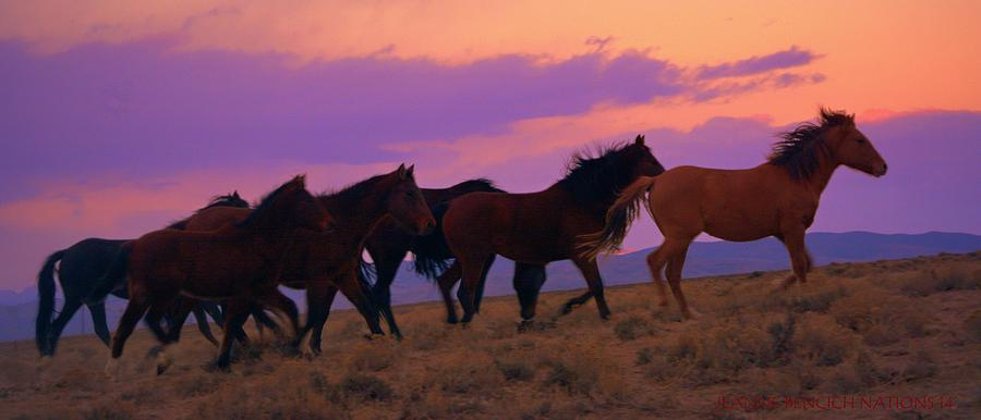 Wild Horses Photograph - Running Wild Running Free  by Jeanne  Bencich-Nations