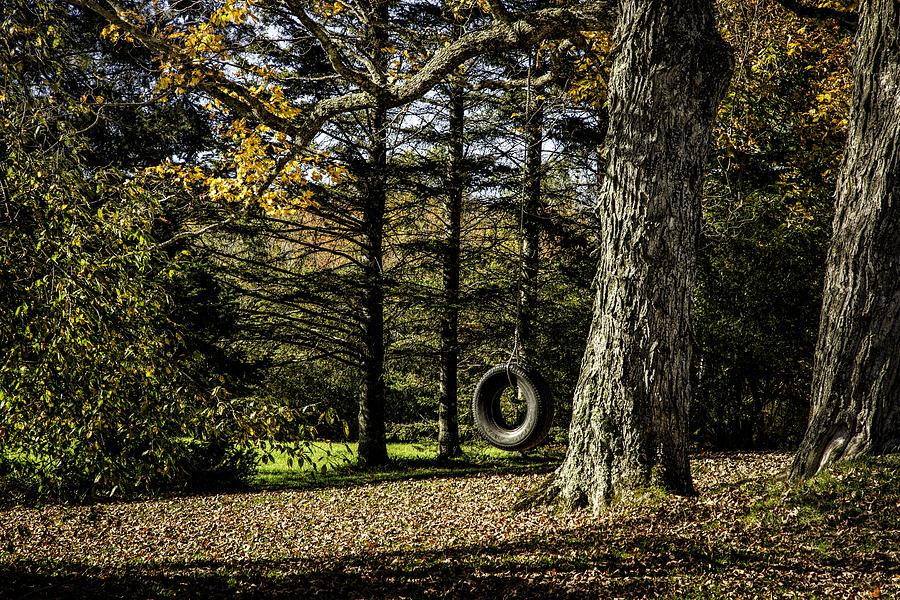Autumn Pyrography - Rural America by Janet Fikar