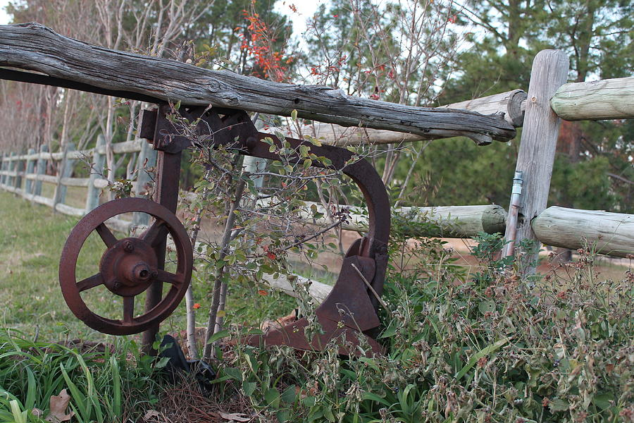 Rural Photograph - Rural Fence Post by Lorri Crossno