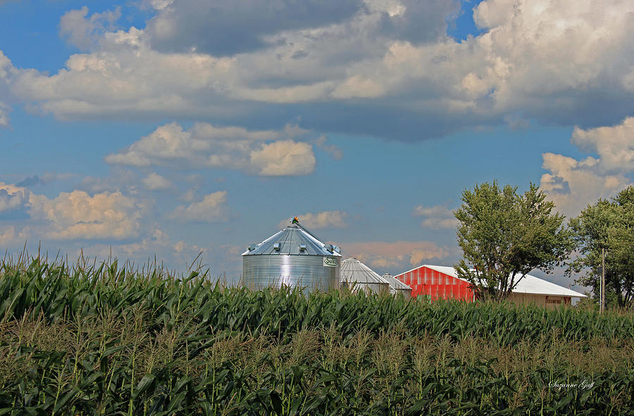 Barn Photograph - Rural Indiana Scene - Adams County by Suzanne Gaff