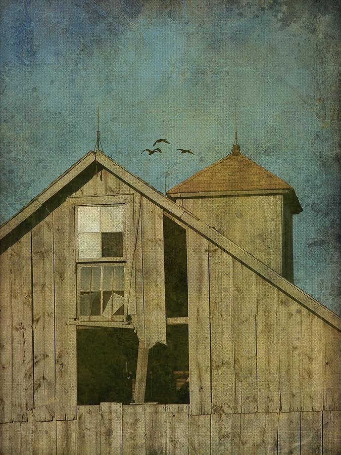 Iowa Photograph - Rural Iowa Barn 5 by Cassie Peters