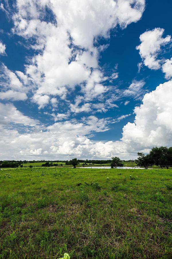 Texas Photograph - Rural Respite by Dan Vidal