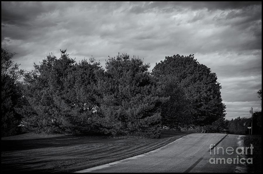 Rural Road 52 Photograph