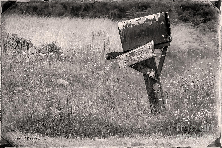 Mailbox Photograph - Rural Route Mail Call  by Jean OKeeffe Macro Abundance Art