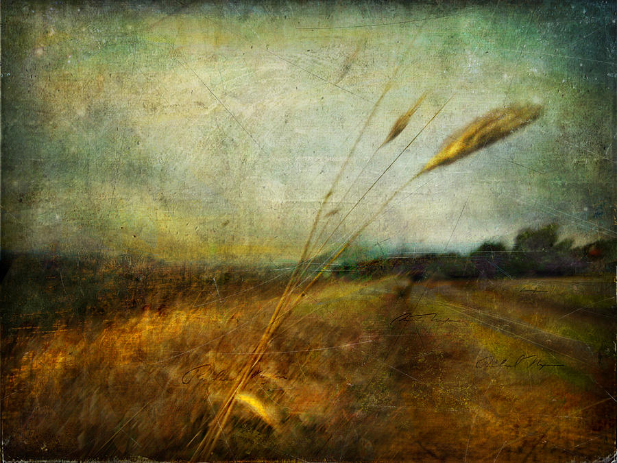 Digital Photograph - Ruralscape #19. The Victory Of Silence by Alfredo Gonzalez