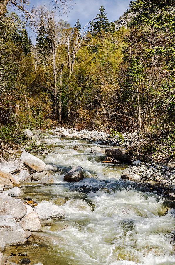 Utah Photograph - Rushing Water by Sue Smith