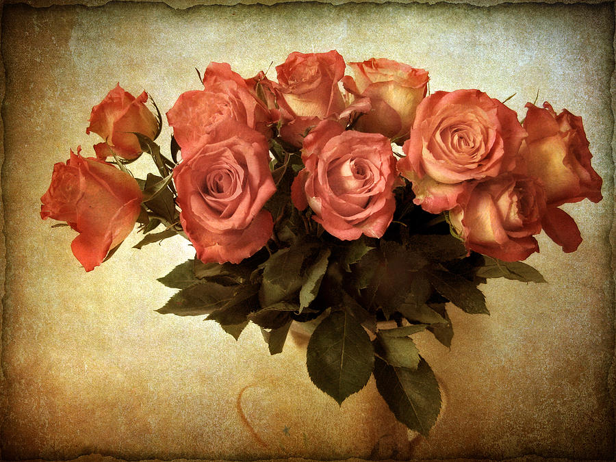 Flowers Photograph - Russet Rose by Jessica Jenney