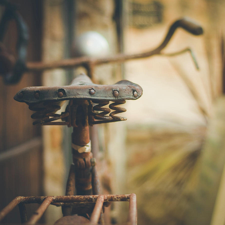 Rust Photograph by Marywilson Photography