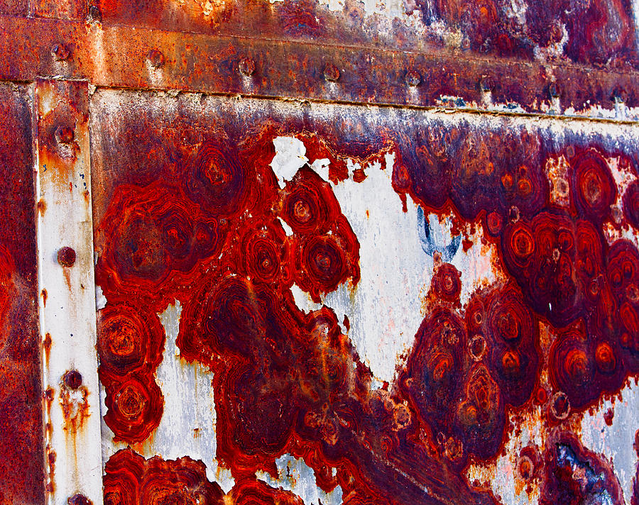 Alberta Photograph - Rusted Metal by Craig Brown
