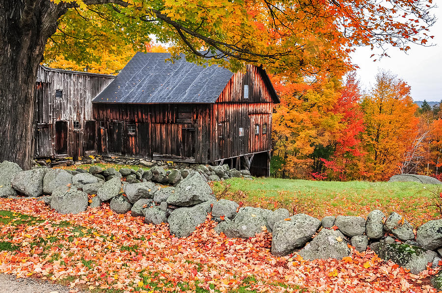 Rustic Barn New Hampshire Autumn Scenic Photograph By
