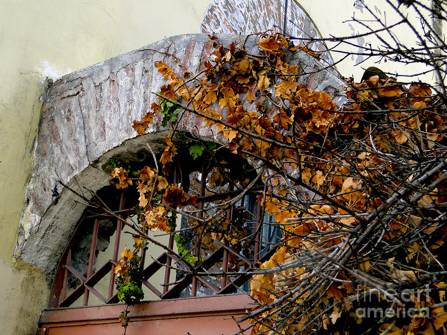 Brick Photograph - Rustic El Vergel Transom by Al Bourassa