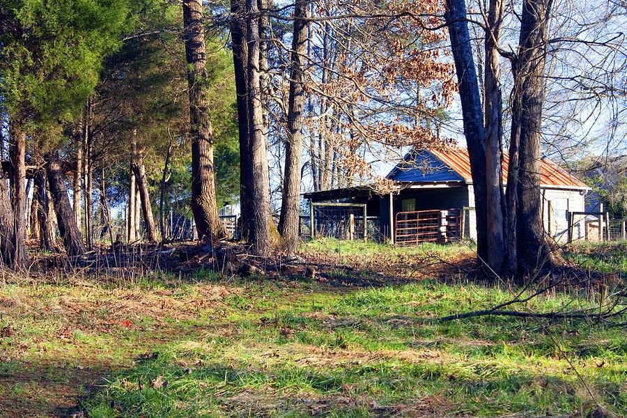 Rustic Farm Scene Photograph By Deb Fruscella