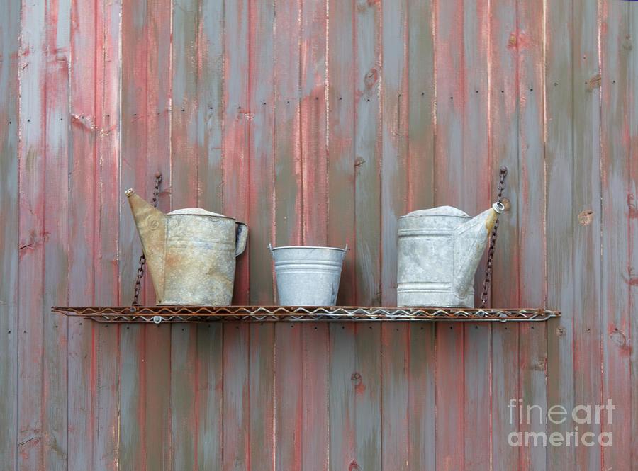Shelf Photograph - Rustic Garden Shelf by Ann Horn
