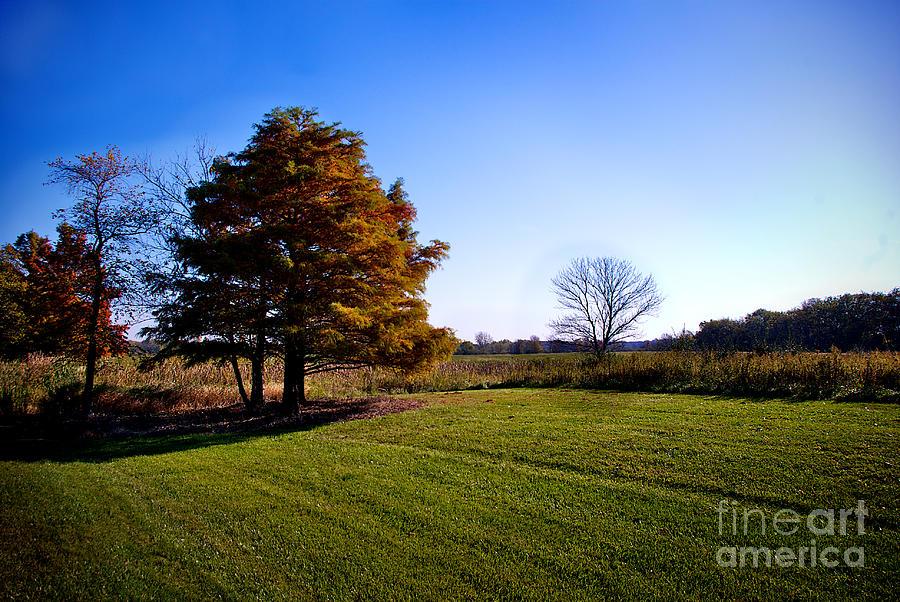 Illinois Photograph - Rustic Glory by Frank J Casella