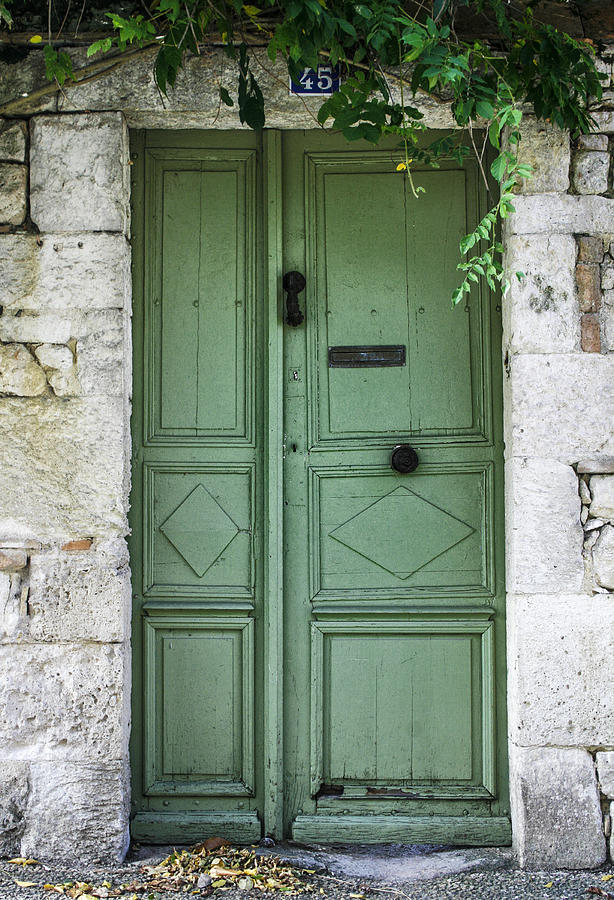 Rustic Photograph - Rustic Green Door With Vines by Georgia Fowler