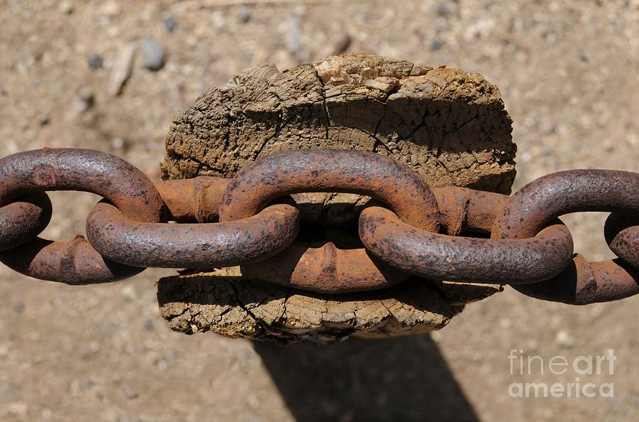 Chain Photograph - Rusting Resting by Dan Holm