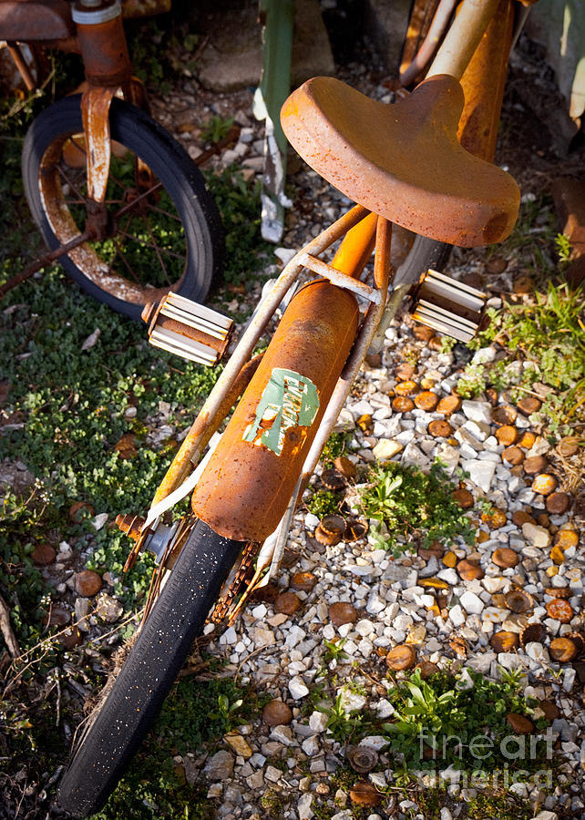 Old Bike Photograph - Rusty Bike Bumper by Sonja Quintero