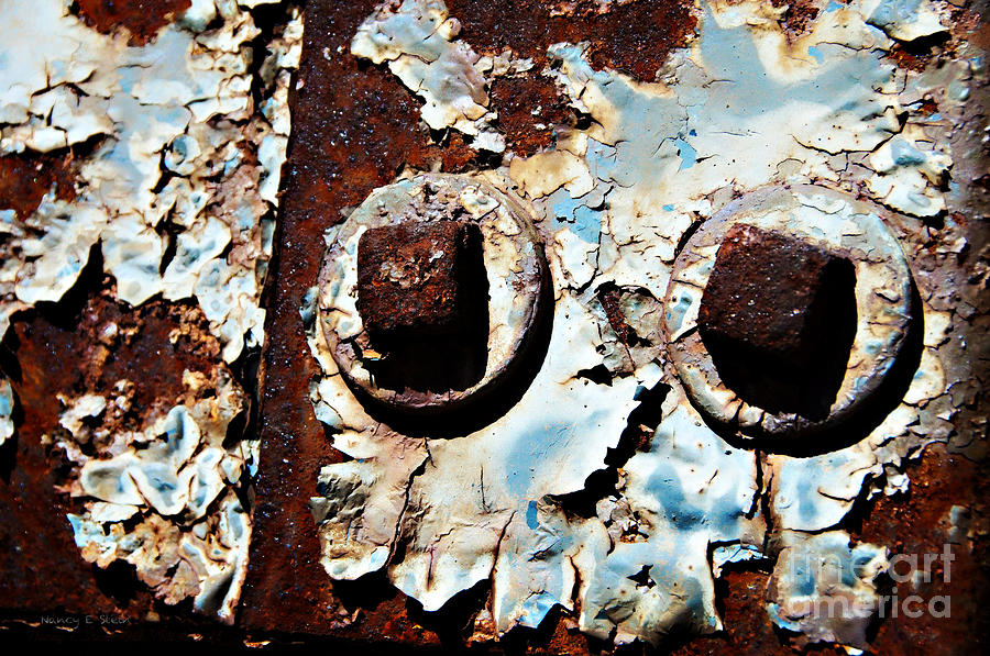 Rusty Bolt Photograph