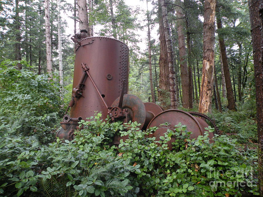 Metal Photograph - Rusty The Old Steamdonkey by Val Carosella