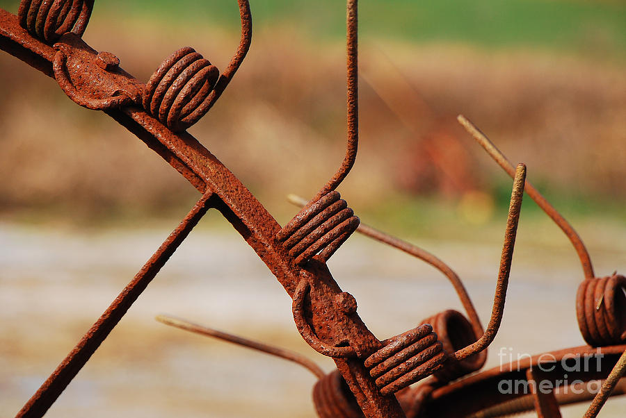 Rust Photograph - Rusty Tines by Mary Carol Story