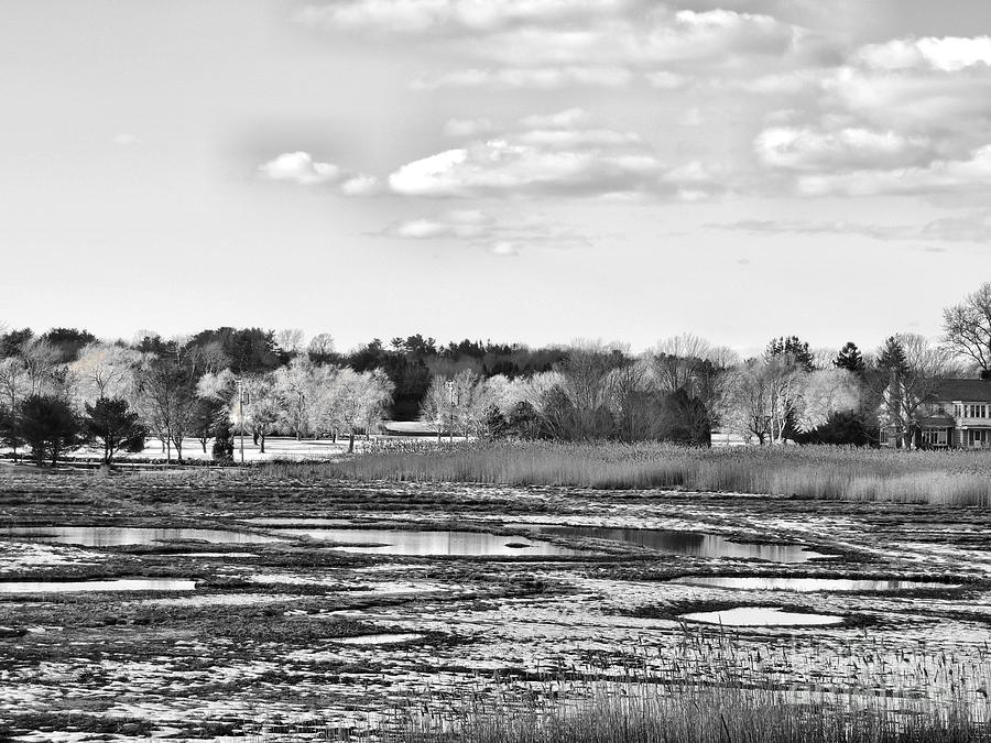 Landscape Photograph - Rye Countryside by Marcia Lee Jones