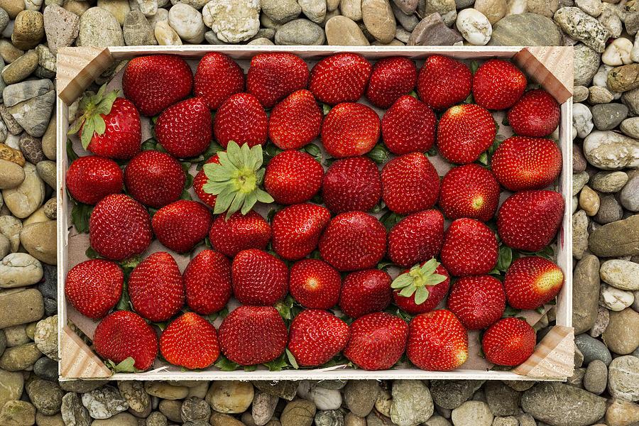 Strawberries Photograph - S T R A W B E R R I E S by Thomas Herzog