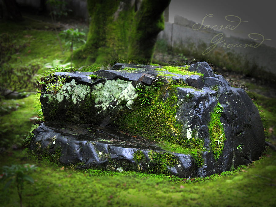 Japan Digital Art - Sacred Ground by Barbara Bitner