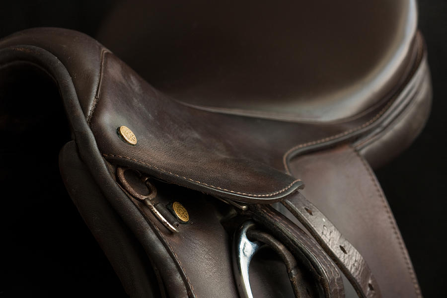 Saddle 1 by M Davis