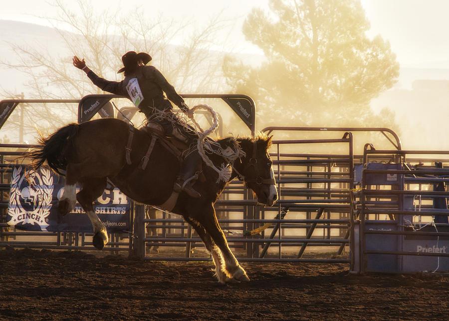 Saddle Bronc Riding At The Cottonwood Rodeo Photograph