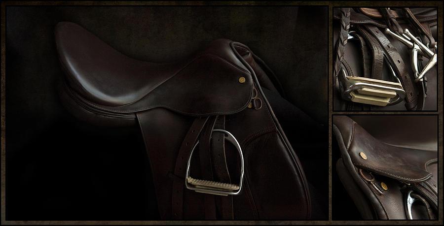 Saddle Triptych by M Davis