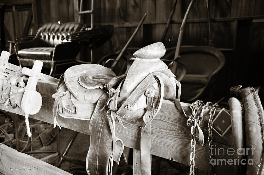 Saddle Up Photograph