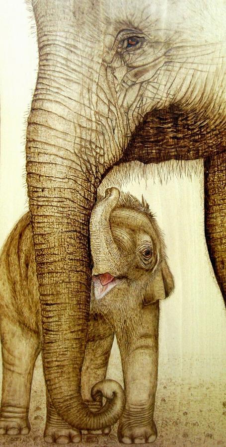 Elephants Pyrography - Safe Haven by Roger Storey