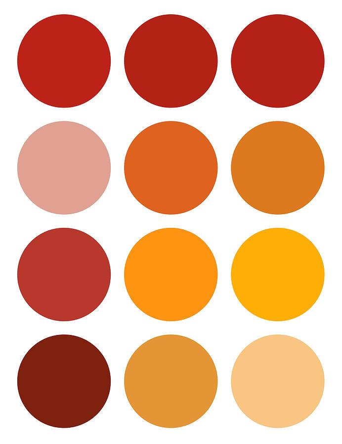 Saffron Painting - Saffron Colors by Frank Tschakert
