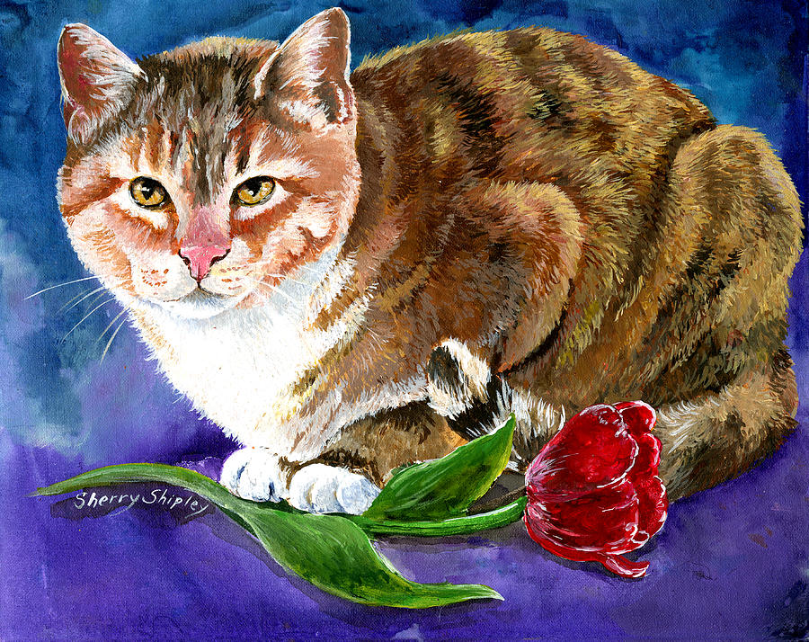 Cat Painting - Saffron by Sherry Shipley