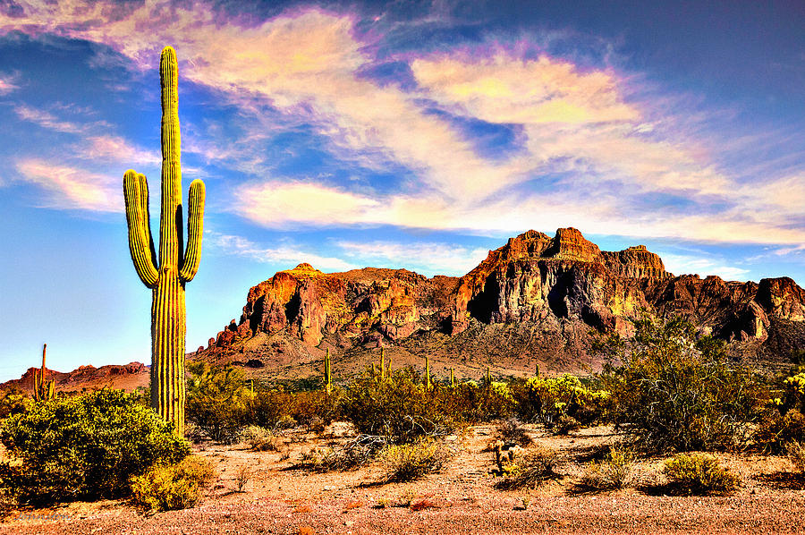 http://images.fineartamerica.com/images-medium-large-5/saguaro-superstition-mountains-arizona-nadine-and-bob-johnston.jpg