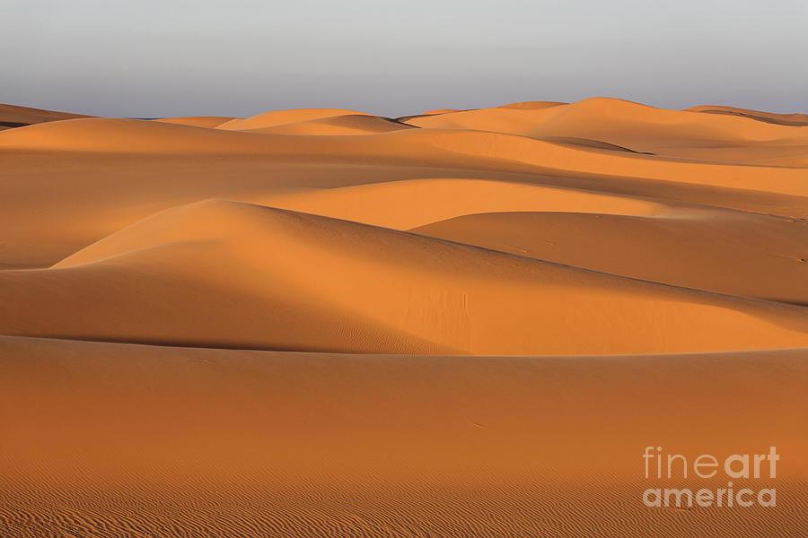 Sahara Photograph - Sahara Desert Dunes by Robert Preston