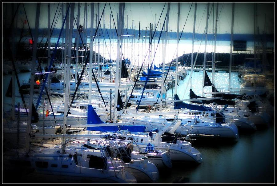 Boats Photograph - Sail Away by Shannon Wall
