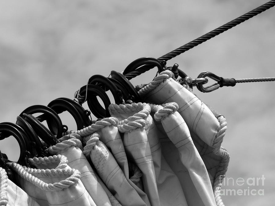 Sail Photograph - Sail Hanks Bw by Christine Stack