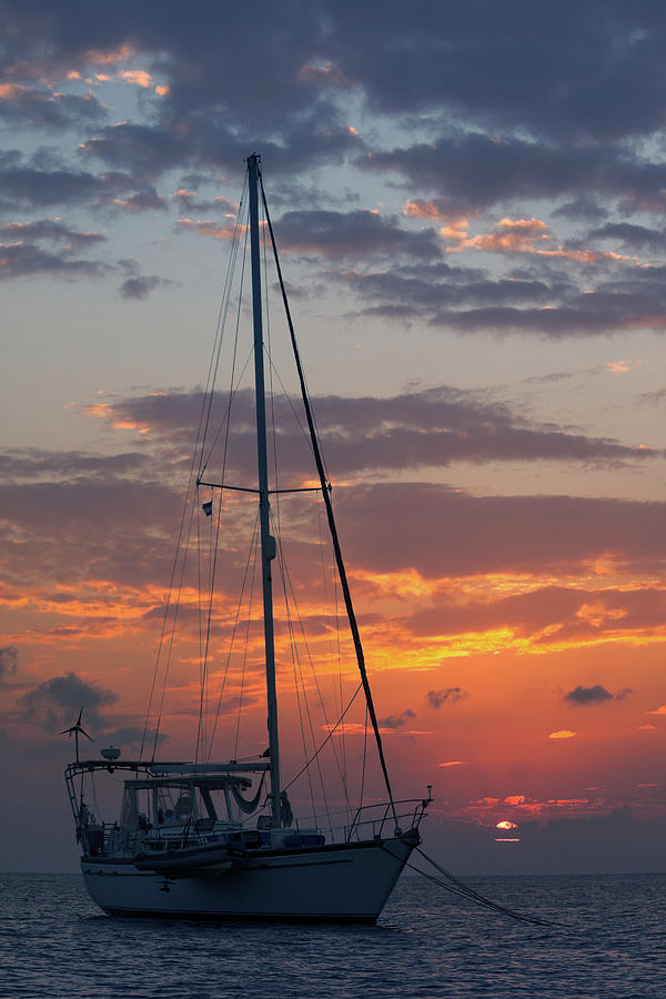 Sailboat At Sunset Photograph by Thepalmer