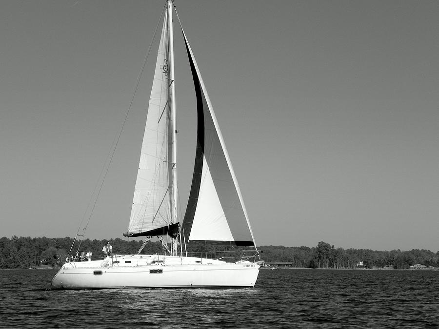 Sailboat Black And White Photograph by Lisa Wooten