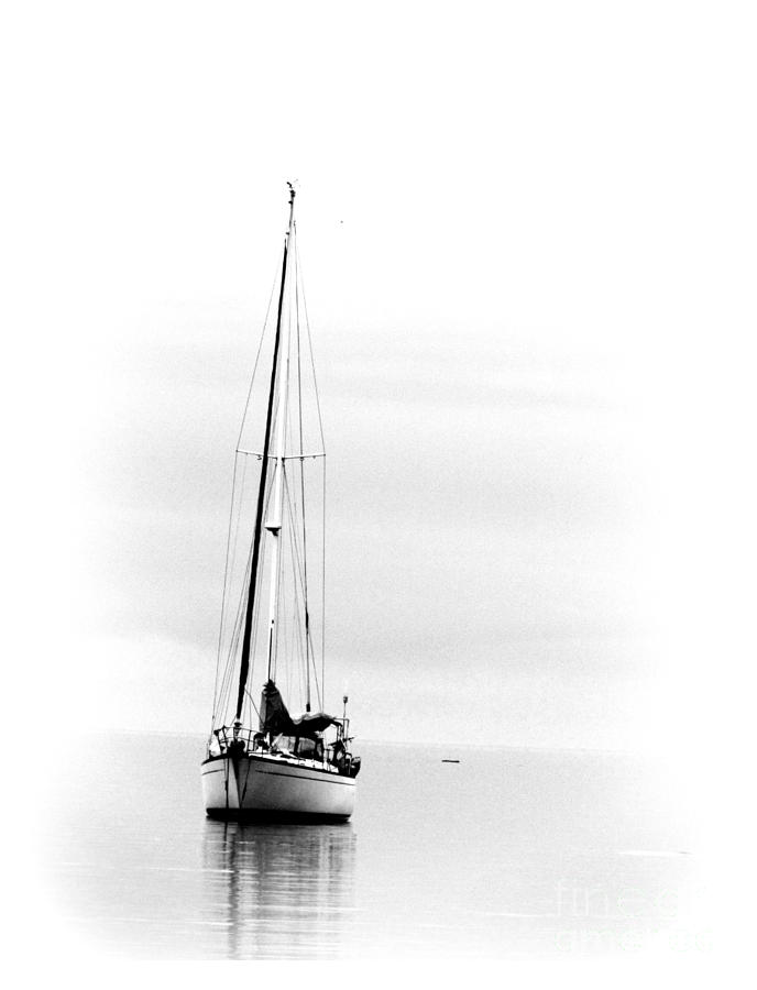 SAILBOAT BW too by Barbara Henry