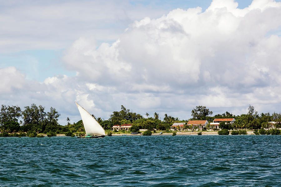 Sailboat In Choppy Waters, Ibo Island Photograph by Danita Delimont