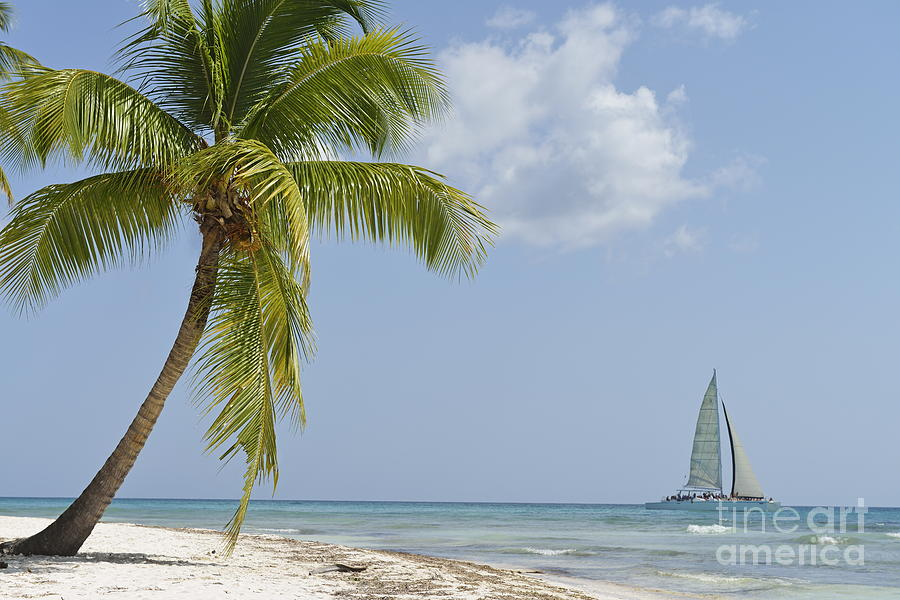 Getting Away From It All Photograph - Sailboat Passing By Tropical Beach by Sami Sarkis