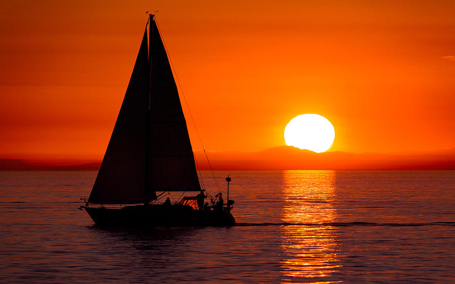Sailboat Sunset Photograph by Alexis Birkill