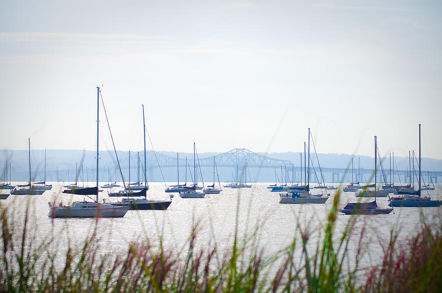 Sailboats Photograph - Sailboats At Rest by Bill Cannon