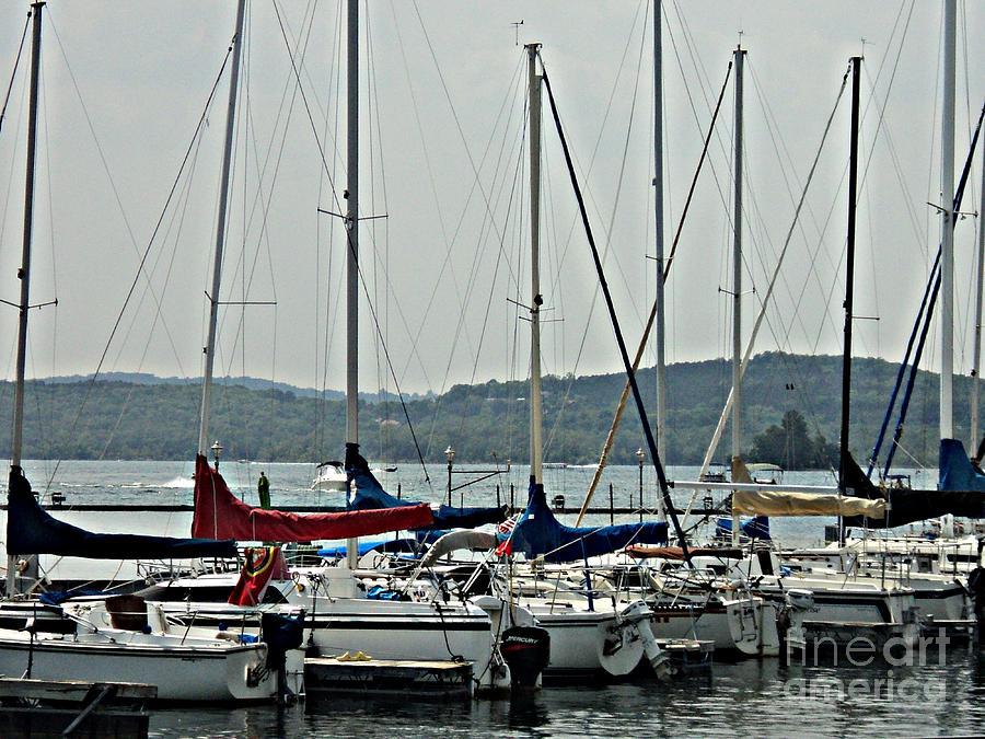 Sail Boats Photograph - Sailboats by Pics by Jody Adams