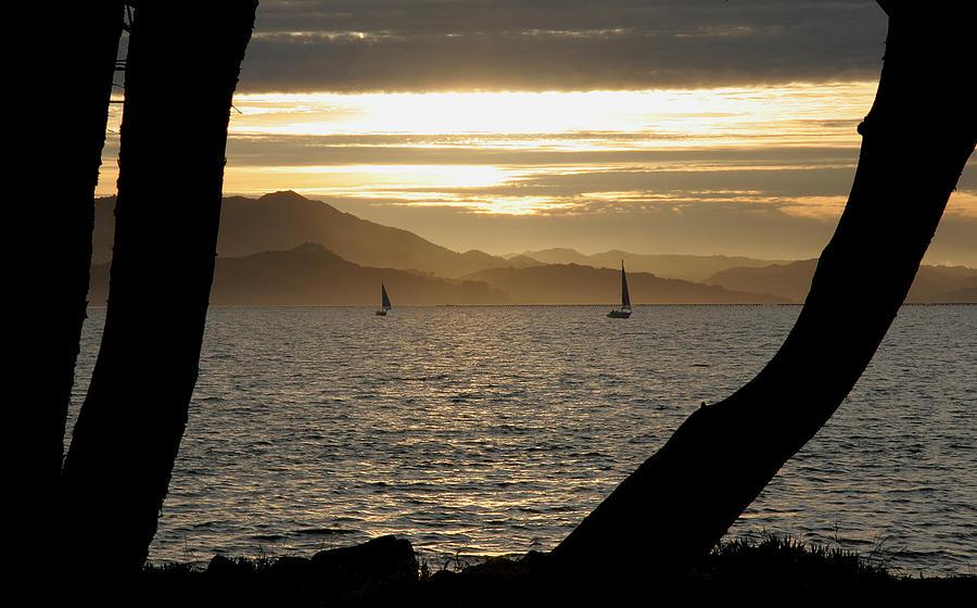 San Francisco Photograph - Sailing At Sunset On The Bay by Robert Woodward