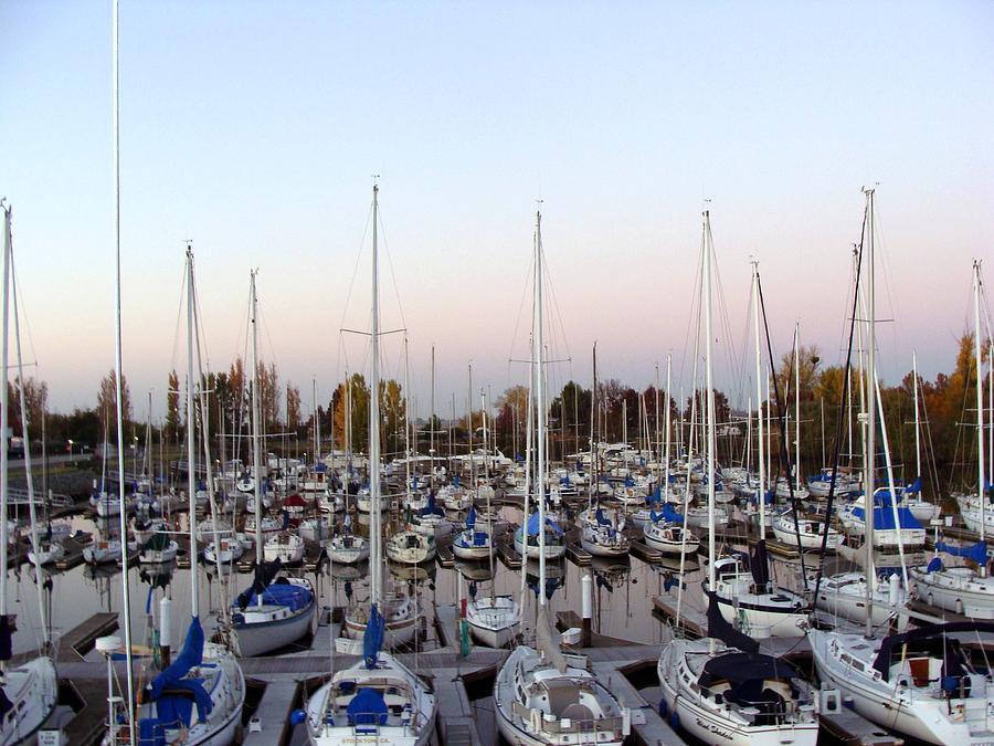Landscape Photograph - Sailing Club Marina by Dee  Savage
