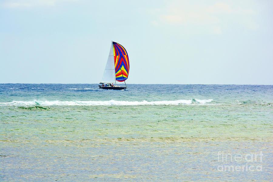 Darla Photograph - Sailing Day by Darla Wood